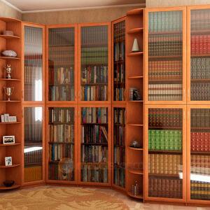 Офисная библиотека в строгом стиле BO-159
