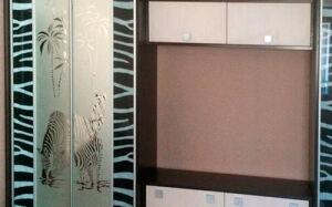 Встроенный шкаф-купе с принтом VSHK-421